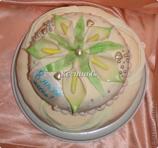 """Мои первый двухуровневый тортик!!! Пекла для родственников на """"железную свадьбу"""".Вес торта 4700г,  мастику в этот раз раскатала слишком тонко, поэтому кое-где есть косячки, со следующим тортиком исправлюсь))) Рецепт торта тут http://stranamasterov.ru/node/371096 фото 3"""