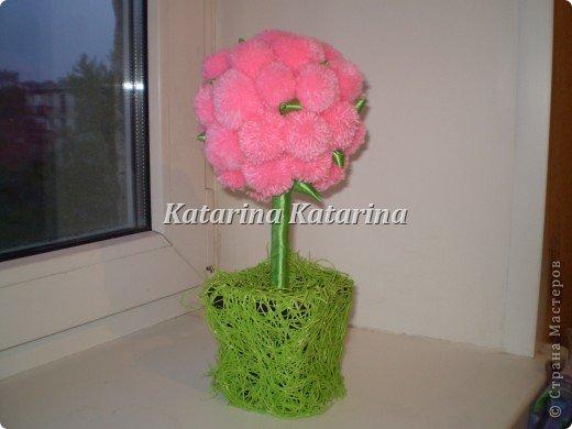розовое дерево фото 2