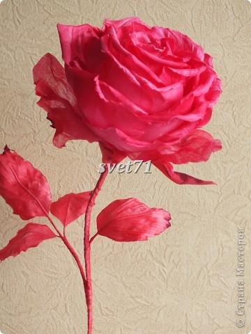 Роза.Шелк. фото 3
