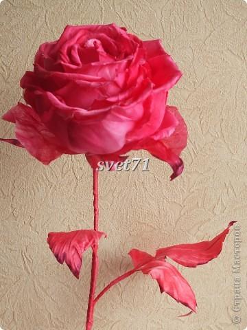 Роза.Шелк. фото 2