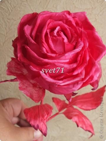 Роза.Шелк. фото 1