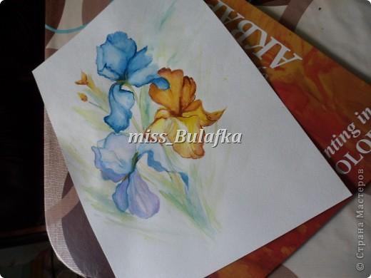 Моя первая работа :)