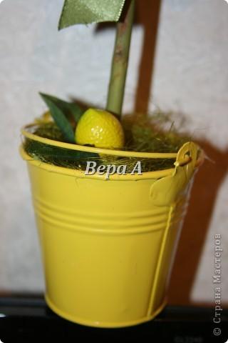 Очередное европейское дерево счастья-топиарий. Сделался в подарок замечательной, отзывчивой женщине на День рождения. фото 3