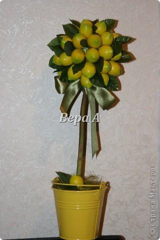 Очередное европейское дерево счастья-топиарий. Сделался в подарок замечательной, отзывчивой женщине на День рождения. фото 1