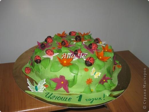 Торт-ноутбук внутри: шоколадные коржи, масло с карамельной сгущенкой и вишня. фото 3
