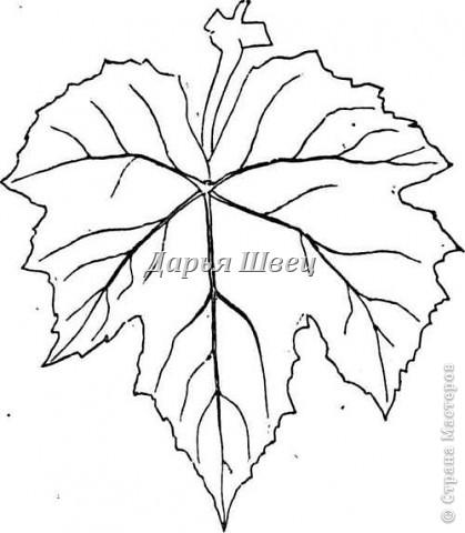 Картина панно рисунок Мастер-класс Лепка Виноград Тесто соленое фото 4
