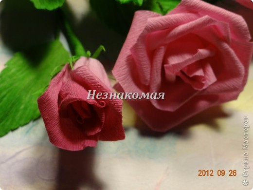 Вот еще одно задание с курсов Ольга К , это ее работа https://stranamasterov.ru/node/361410 . Вот так увидела эти розы я. Это окончательный вариант. фото 6