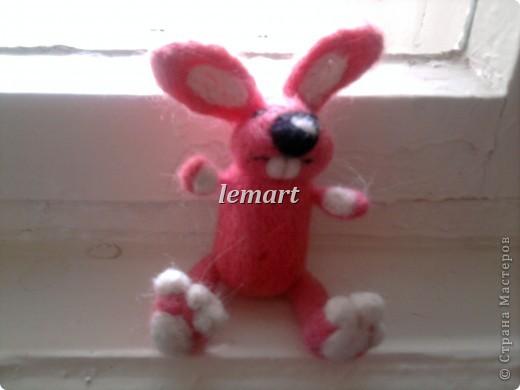 розовая зайчиха фото 1