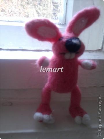 розовая зайчиха фото 2