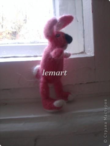 розовая зайчиха фото 3