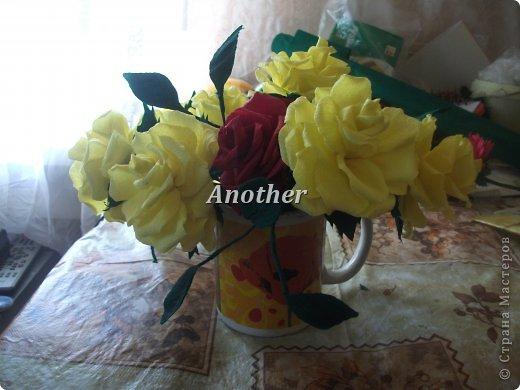 мои розы,выкладываю на ваш суд так сказать!=) фото 1