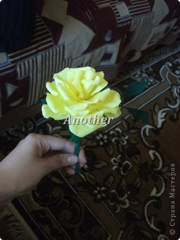 мои розы,выкладываю на ваш суд так сказать!=) фото 3