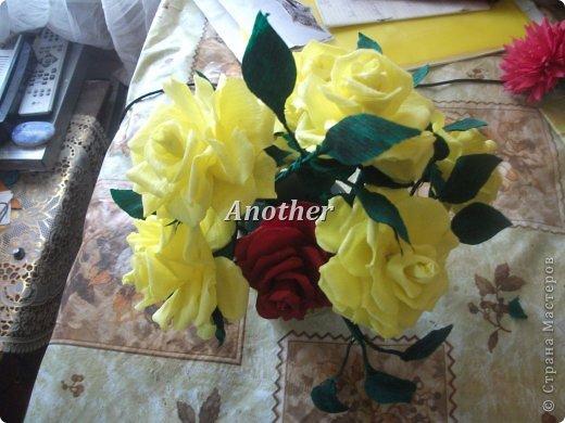мои розы,выкладываю на ваш суд так сказать!=) фото 4