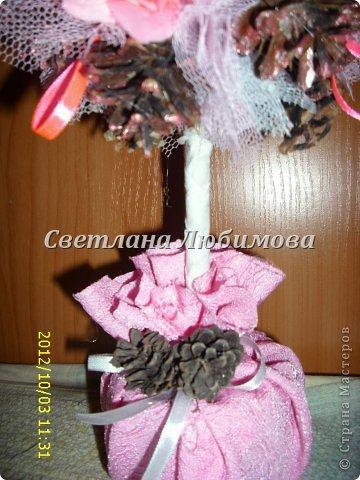 Вот так повезло моим шишкам -они рядом с цветами и лентами! И еще я их покрасила лаком розовым, перламутровым. Гламур да и только! фото 3