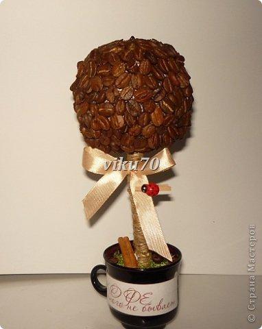 Обожаю кофе! И знаю, кому приятно будет получит в подарок ароматное деревце.  фото 1