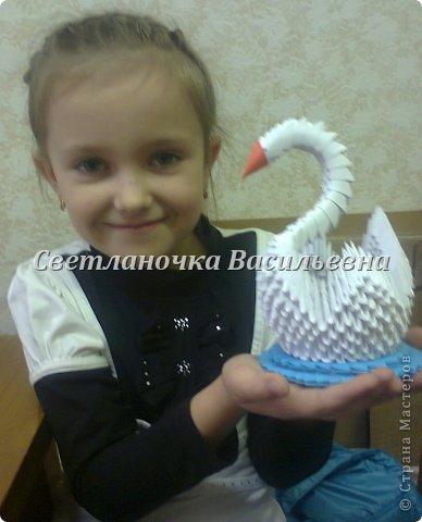Лебеди фото 17