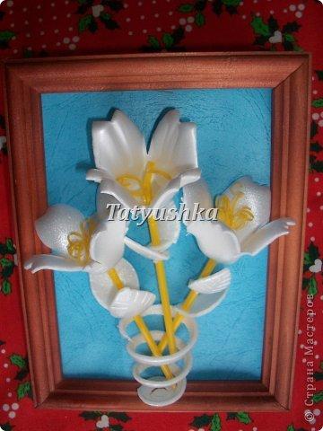 Здравствуйте, мастера и мастерицы! Предлагаю посмотреть, как можно сделать или попробовать самим сделать простые цветочки из упаковки от яиц.  фото 4