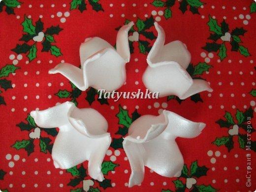 Здравствуйте, мастера и мастерицы! Предлагаю посмотреть, как можно сделать или попробовать самим сделать простые цветочки из упаковки от яиц.  фото 16