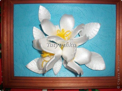 Здравствуйте, мастера и мастерицы! Предлагаю посмотреть, как можно сделать или попробовать самим сделать простые цветочки из упаковки от яиц.  фото 56