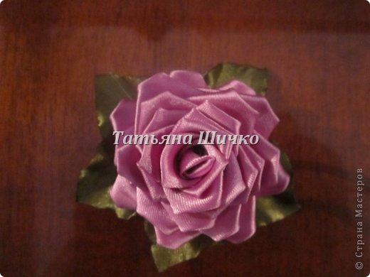 мои цветочки фото 3