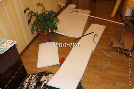 Вот такой тигровый раскрасавец украшает теперь нашу кухню. фото 15