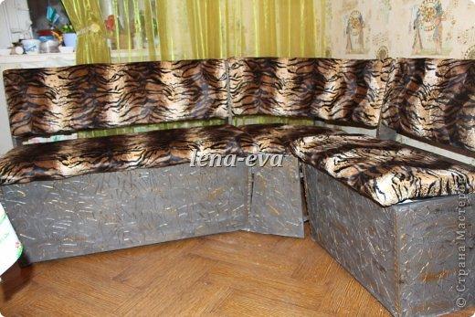Вот такой тигровый раскрасавец украшает теперь нашу кухню. фото 20