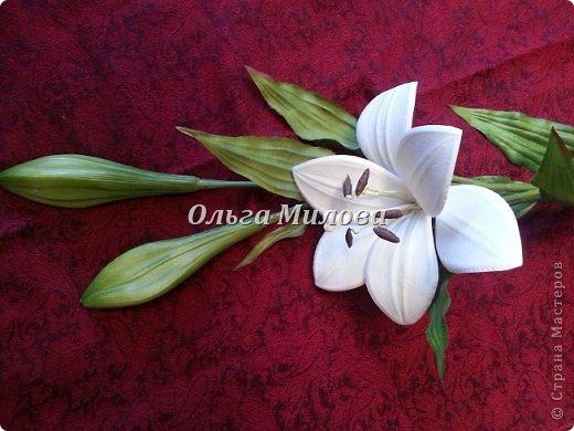 Лилия из бумаги Цветок