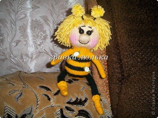 1.пчелка Майя.Вязалась для