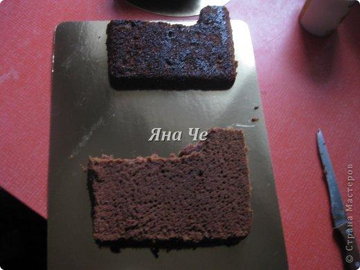 Такой вот торт-фотоаппарат сегодня я сделала. Делала его впервые и постаралась запечатлеть сей процесс, чем и хочу поделиться с Вами. Это первый мой МК, так что не судите строго. фото 2