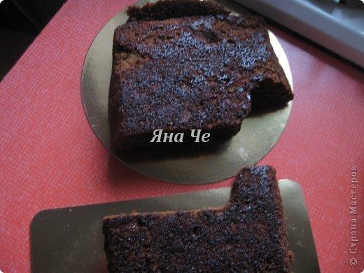 Такой вот торт-фотоаппарат сегодня я сделала. Делала его впервые и постаралась запечатлеть сей процесс, чем и хочу поделиться с Вами. Это первый мой МК, так что не судите строго. фото 3