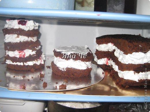 Такой вот торт-фотоаппарат сегодня я сделала. Делала его впервые и постаралась запечатлеть сей процесс, чем и хочу поделиться с Вами. Это первый мой МК, так что не судите строго. фото 7