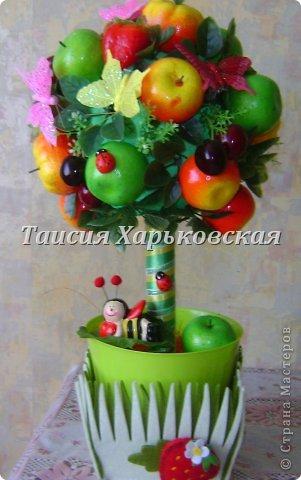 Топиарий своими руками фруктовый