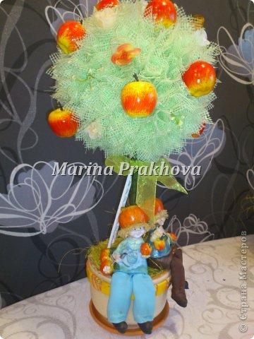 Яблочное дерево фото 1