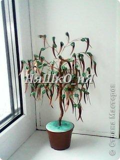 вот мое дерево с перчиками фото 1