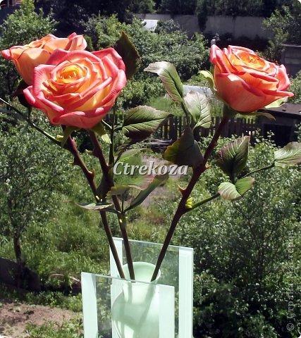 Розы из полимерной глины. фото 3