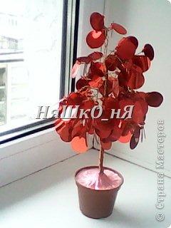 вот мое дерево с перчиками фото 10