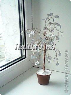 вот мое дерево с перчиками фото 11