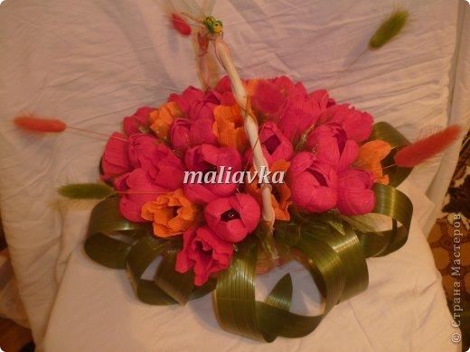 тюльпаны для бухгалтера фото 1