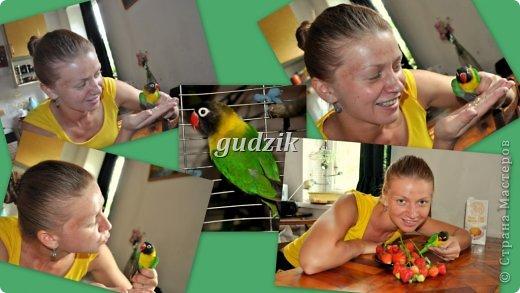 недельки 2-е назад на даче мы словили вот таково или же такую красавицу. теперь у нас живет попугай-неразлучник масковый,зовут Дейзик :))))))))))))))