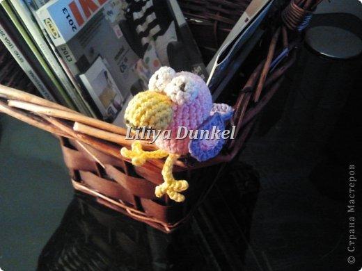 rozovaya vorona фото 2