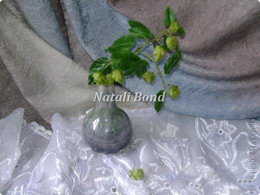 Мастер-класс Флористика Лепка Хмель-как его я делаю  Фарфор холодный фото 1