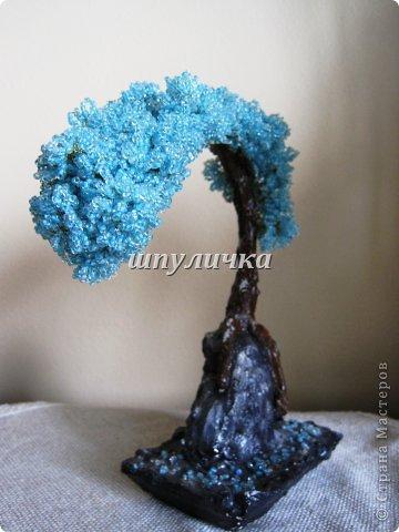 Голубой бонсай фото 3