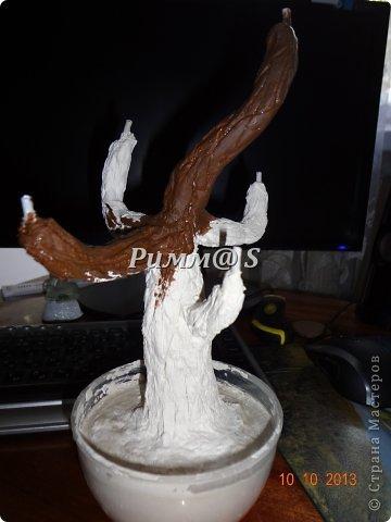 Здравствуйте ! Хочу показать вам два новых деревца.Бонсай из пряжи и баобаб из кофе.Вдохновителями для меня стали мастерицы Оля и Люба. Спасибо вам девочки!!! Особенное спасибо Оле за Мастер класс! Думаю.что если бы не этот подробный и понятный урок,то не быть у меня этому деревцу))) фото 3