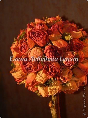 Топиарий из сушеных роз