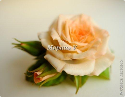 Мне кажется, розы можно лепить бесконечно и скучно не будет) Они всегда получаются по-разному. И так интересно подбирать новые краски,оттенки, полу-тона...  фото 1