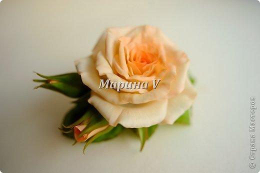 Мне кажется, розы можно лепить бесконечно и скучно не будет) Они всегда получаются по-разному. И так интересно подбирать новые краски,оттенки, полу-тона...  фото 4