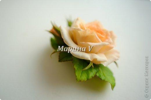 Мне кажется, розы можно лепить бесконечно и скучно не будет) Они всегда получаются по-разному. И так интересно подбирать новые краски,оттенки, полу-тона...  фото 5