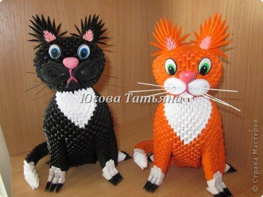 Кошки, которых подарила на день рожденье фото 1