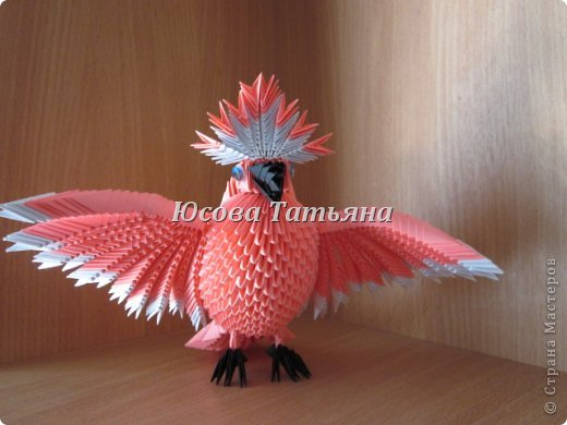 Розовый попугай фото 1