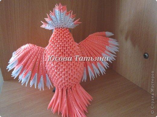 Розовый попугай фото 2